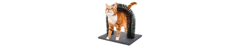 Accessori per gatti