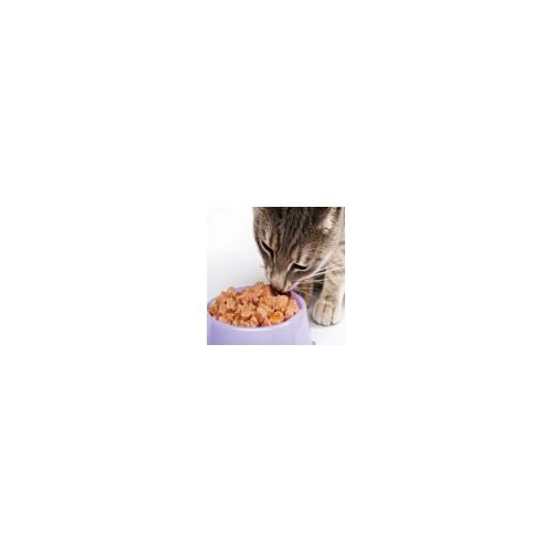 Alimenti per gatti
