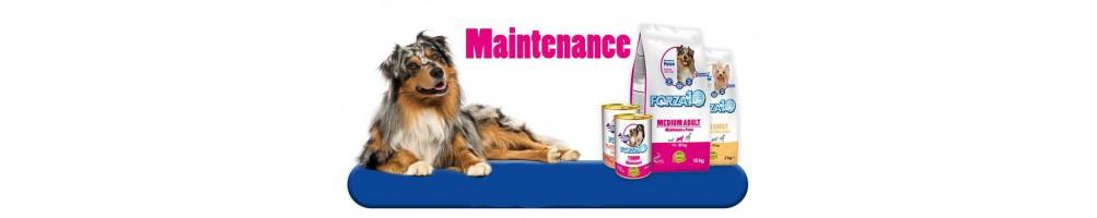 Linea Maintenance
