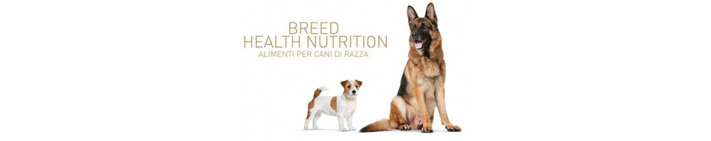 Breed Healt Nutrition