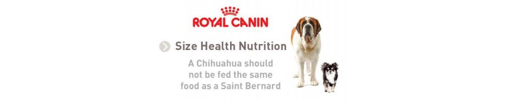 Size Healt Nutrition